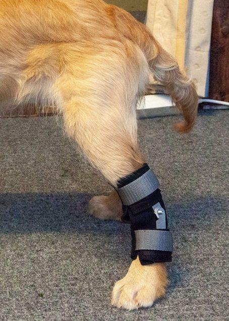 Taituki achilles tendon support